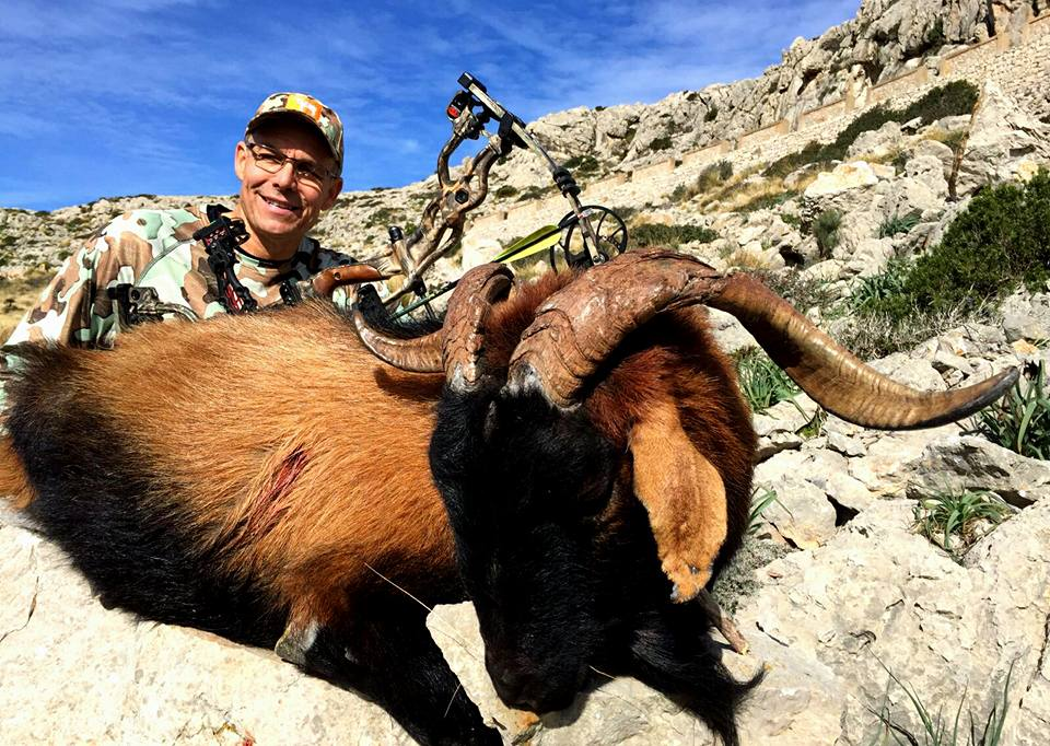 vTom took this great Balearean Boc with his bow on this epic hunt.