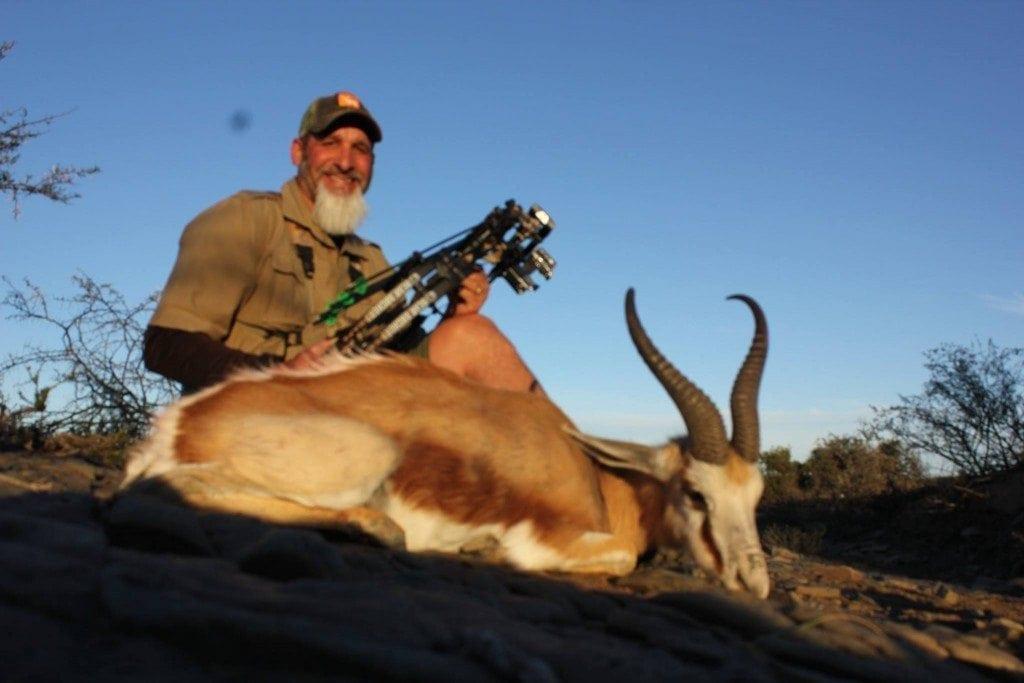 Matt Common Springbok