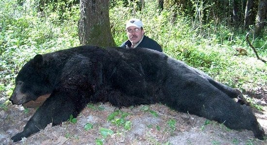 A black bear taken in Idaho