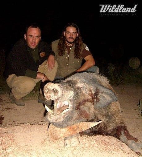 argentina-wild-boar-slider
