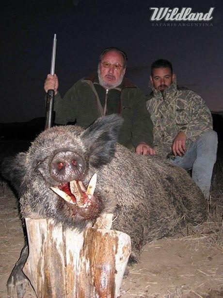 argentina-wild-boar-slider2