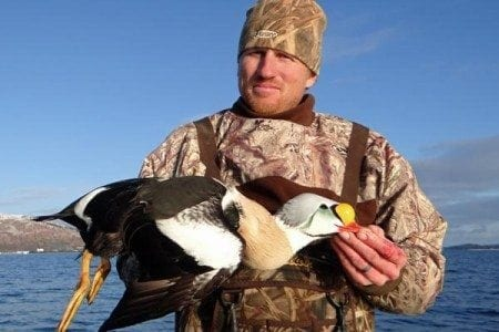 alaska-sea-duck3