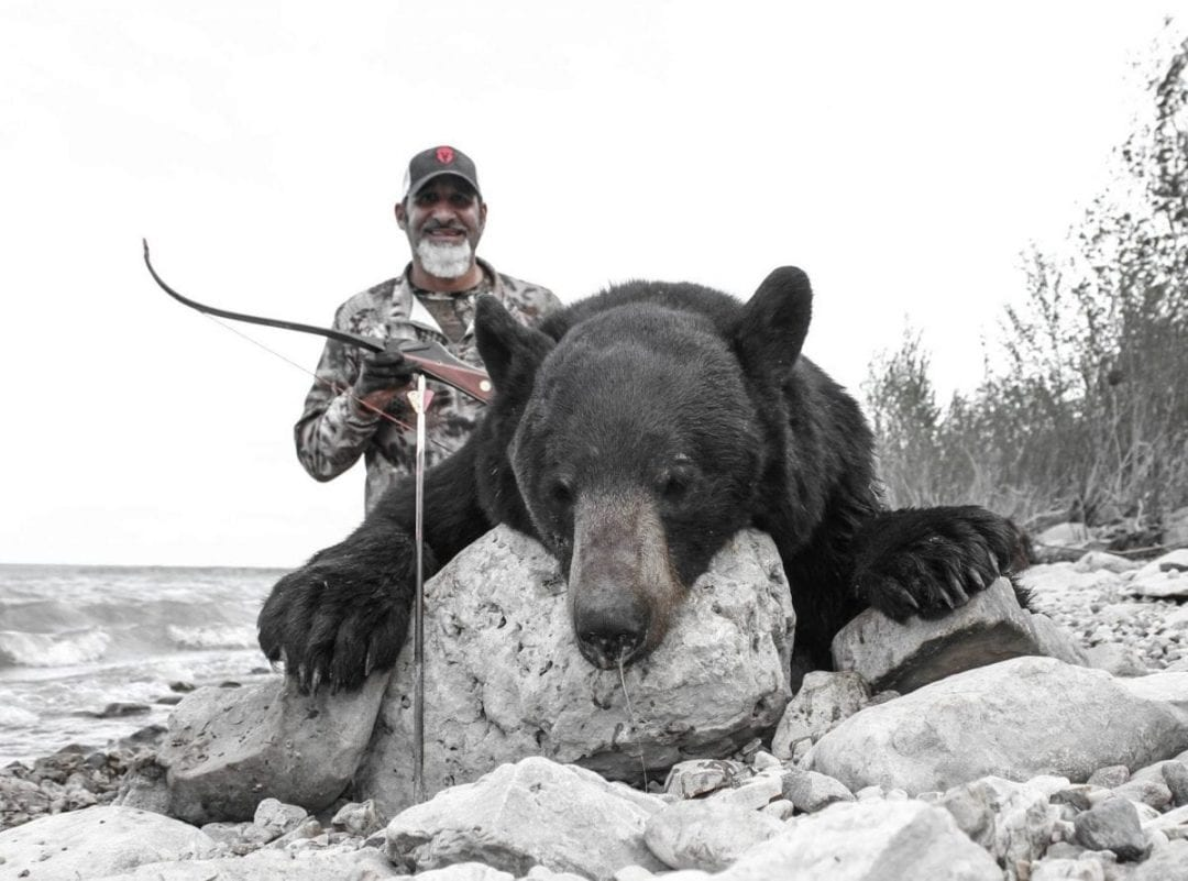 Saskatchewan Matt Guedes Grizzly Bear with a Recurve