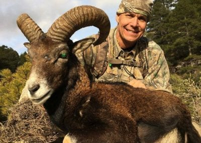 Spain Sierra Nevada Ibex and Mouflon Cazorla Package Hunt