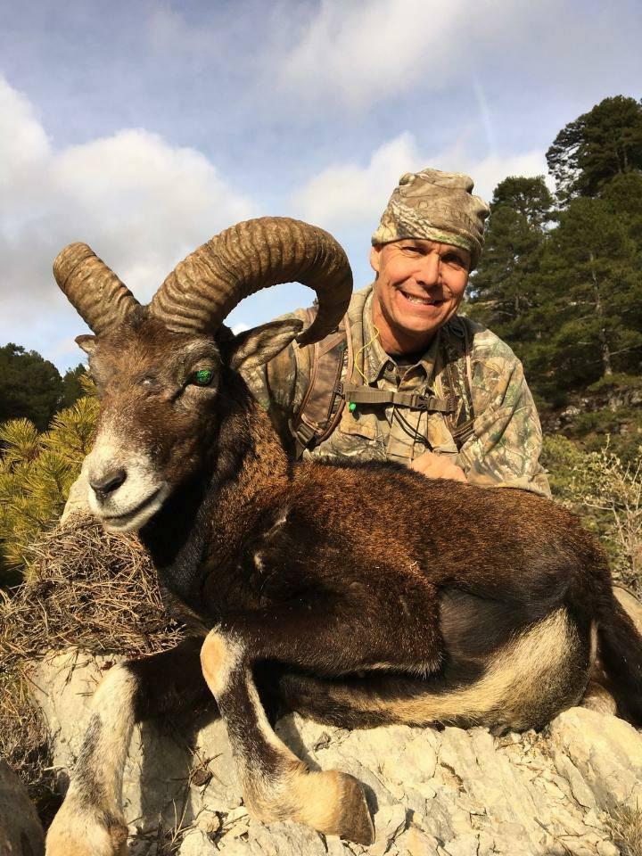 Tom Lee with his Mouflon