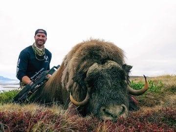 Greenland Muskox & Muskox/Caribou Hunt