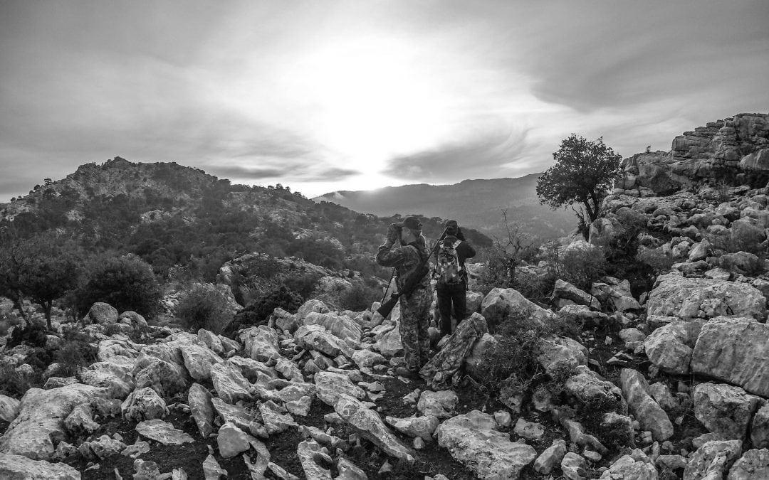 Where we Hunt, We Hunt in Spain