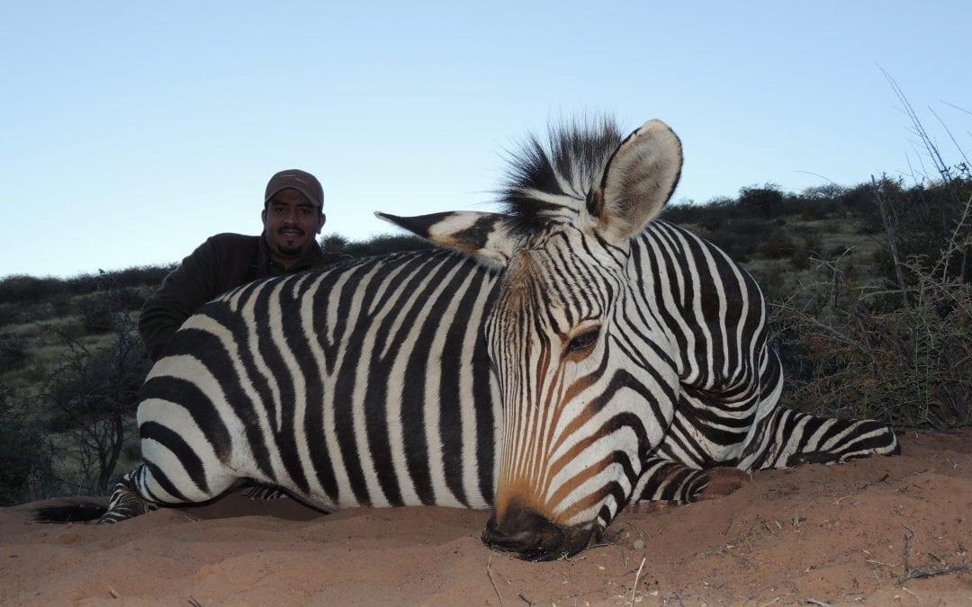 Namibia 10 Day Safari 6 Species