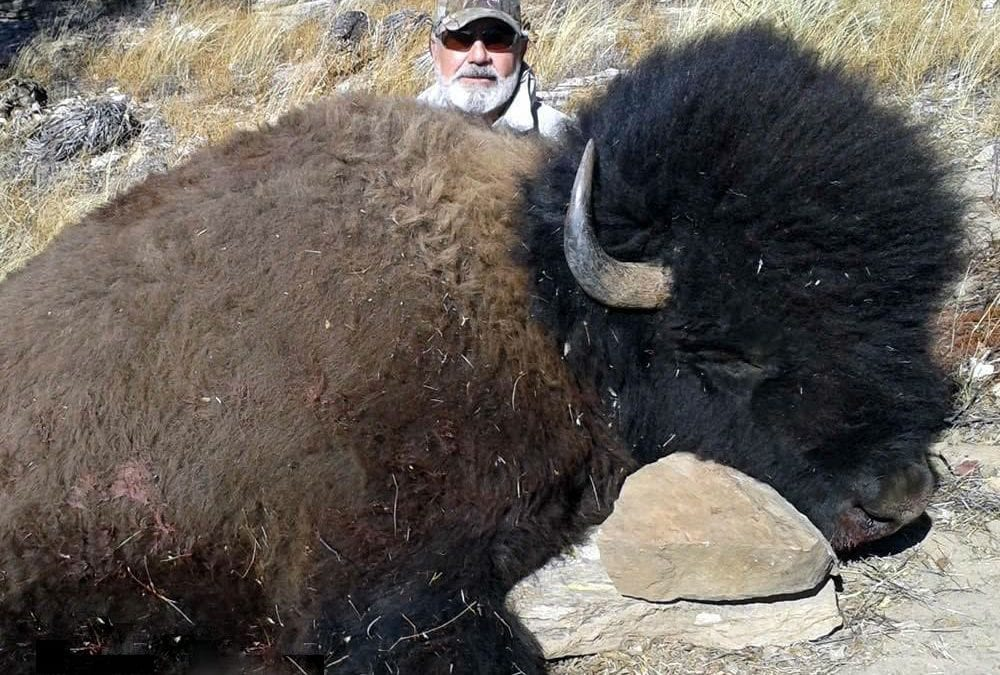 Mexico Buffalo Hunt