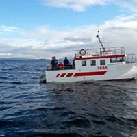 Iceland Single Day Fishing Tours on the Sea